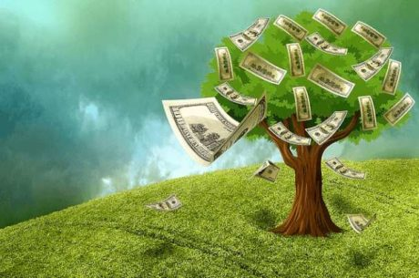 401(k) Borrowing from your future money tree