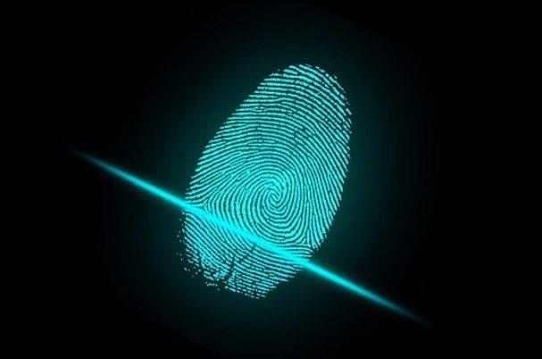 Identity fraud vs identity theft