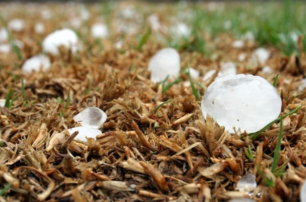 Hail Season is Just Around the Corner